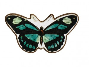 Magnes Butterfly 1 szt.